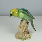 #930 Parakeet
